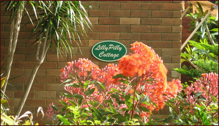 Lillypilly - Wagga Wagga Accommodation