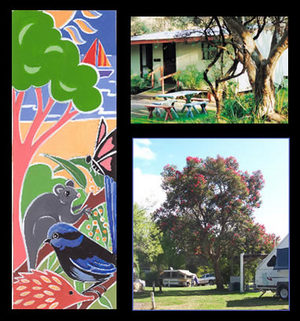 Bushland Cabins - Wagga Wagga Accommodation