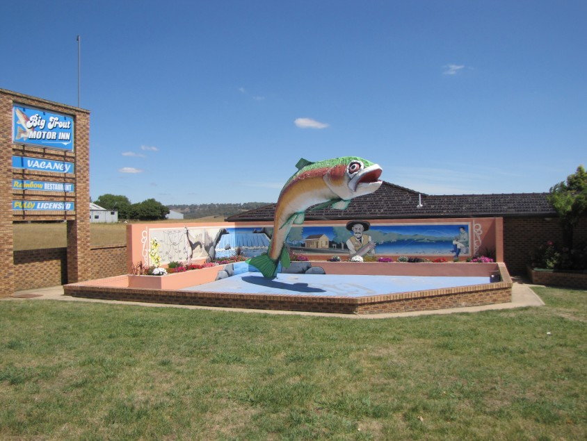 The Big Trout Motor Inn - Wagga Wagga Accommodation