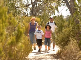 Long Island Caravan Park Cabins - Wagga Wagga Accommodation