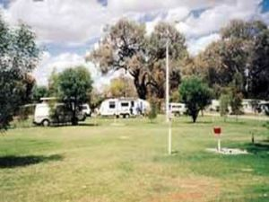 Morgan Riverside Caravan Park - Wagga Wagga Accommodation