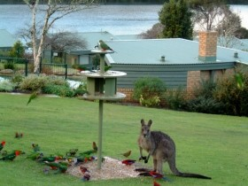 Gipsy Point Lakeside - Wagga Wagga Accommodation