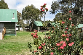 Derwent Bridge Chalets  Studios - Wagga Wagga Accommodation