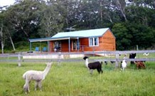 Moorallie Cottage Farm Stay - Wagga Wagga Accommodation