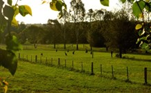Stone Cottage Mittagong - Wagga Wagga Accommodation