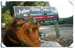 Arthur River Cabin Park - Wagga Wagga Accommodation