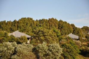 Tallaringa Views - Wagga Wagga Accommodation