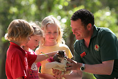 Cleland Wildlife Park - Wagga Wagga Accommodation