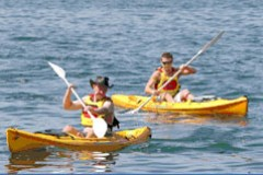 Manly Kayaks - Wagga Wagga Accommodation