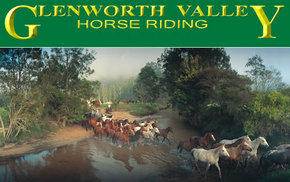 Glenworth Valley Horseriding - Wagga Wagga Accommodation