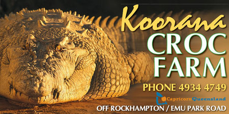 Koorana Saltwater Crocodile Farm - Wagga Wagga Accommodation