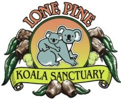 Lone Pine Koala Sanctuary - Wagga Wagga Accommodation