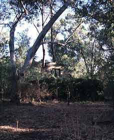 Ghost House Walk Trail Yanchep National Park - Wagga Wagga Accommodation