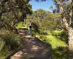 Leschenault Peninsula Conservation Park - Wagga Wagga Accommodation