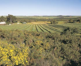 Chapman Valley Scenic Drive - Wagga Wagga Accommodation