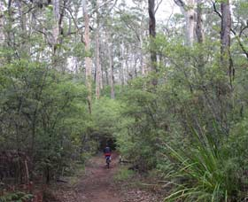 Margaret River Rails Trail