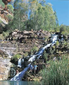 Fortescue Falls - Wagga Wagga Accommodation