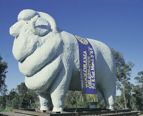 Giant Ram Tourist Park - Wagga Wagga Accommodation
