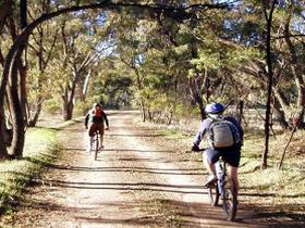 Bike About Mountain Bike Tours And Hire - Wagga Wagga Accommodation