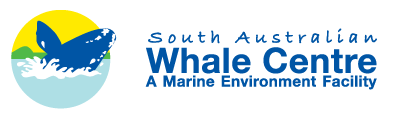 South Australian Whale Centre - Wagga Wagga Accommodation