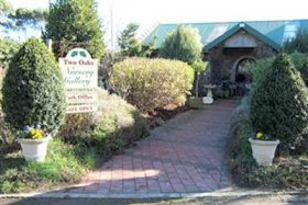 Two Oaks Nursery Gallery and Cafe - Wagga Wagga Accommodation