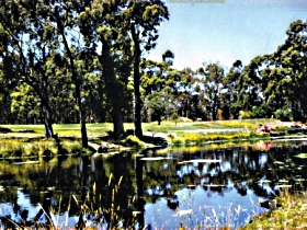 Smithton Country Club - Wagga Wagga Accommodation