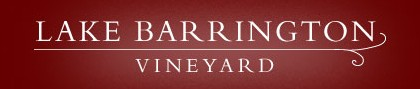 Lake Barrington Estate Vineyard - Wagga Wagga Accommodation