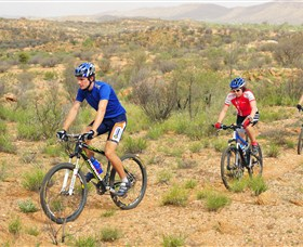 Araluen Mountain Bike Trails - Wagga Wagga Accommodation