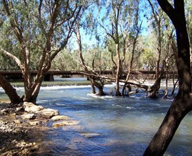 Low Level Nature Reserve - Wagga Wagga Accommodation