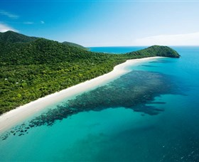 Cape Tribulation Daintree National Park - Wagga Wagga Accommodation