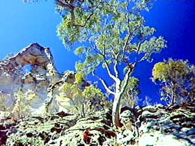 Mount Moffatt Section - Carnarvon National Park - Wagga Wagga Accommodation