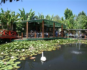 Blue Lotus Water Garden - Wagga Wagga Accommodation
