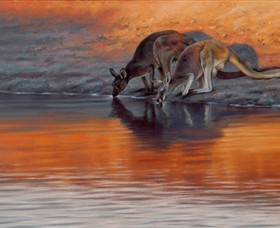 Steve Morvell Wildlife Art - Wagga Wagga Accommodation