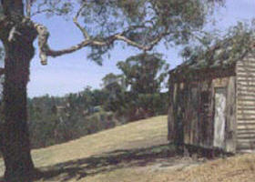Hawkstowe Picnic Area - Wagga Wagga Accommodation