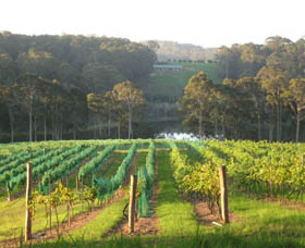 Tilba Valley Wines - Wagga Wagga Accommodation