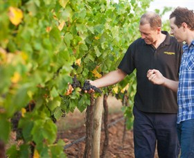 Fratin Brothers Vineyard - Wagga Wagga Accommodation