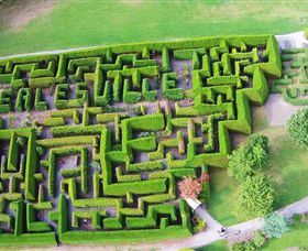 Hedgend Maze and Healesville Laser Sport - Wagga Wagga Accommodation