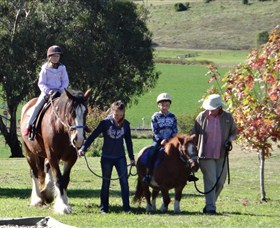 Bathurst Farm Experience - Wagga Wagga Accommodation