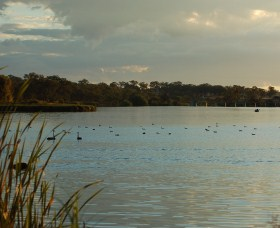 Lake Inverell Reserve - Wagga Wagga Accommodation
