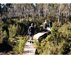 Hume and Hovell Walking Track - Henry Angel Trackhead - Wagga Wagga Accommodation