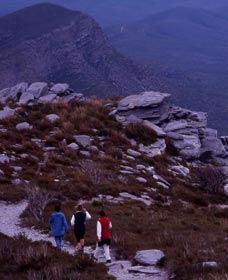 Bluff Knoll Stirling Range National Park - Wagga Wagga Accommodation