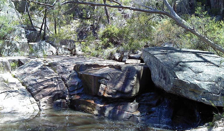 Torrington State Conservation Area - Wagga Wagga Accommodation
