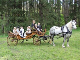 Classic Carriage Drives