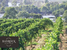 Banrock Station Wine And Wetland Centre - Wagga Wagga Accommodation