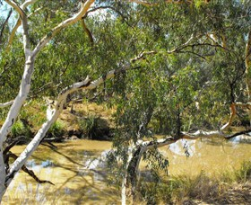 Quilberry Creek Fishing - Wagga Wagga Accommodation