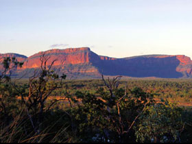 Blackdown Tableland National Park - Wagga Wagga Accommodation