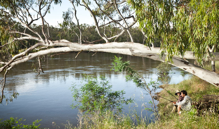 Murray Valley National Park - Wagga Wagga Accommodation