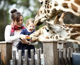 Taronga Western Plains Zoo Dubbo - Wagga Wagga Accommodation