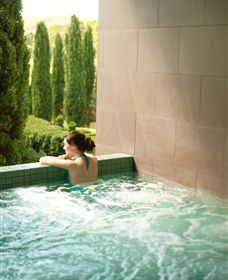 The Mineral Spa - Wagga Wagga Accommodation