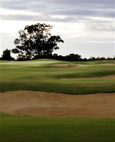 Black Bull Golf Club - Wagga Wagga Accommodation